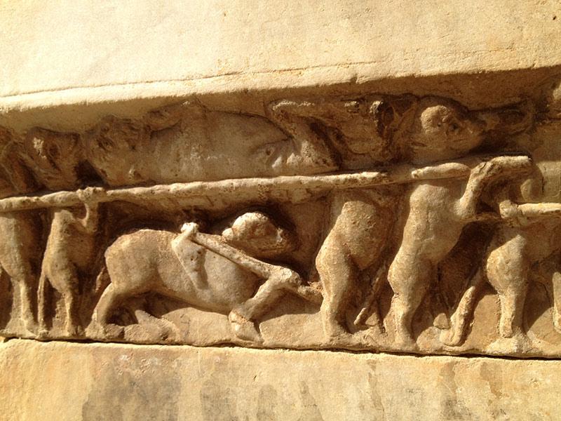 procesión de ratas en la catedral de tarragona